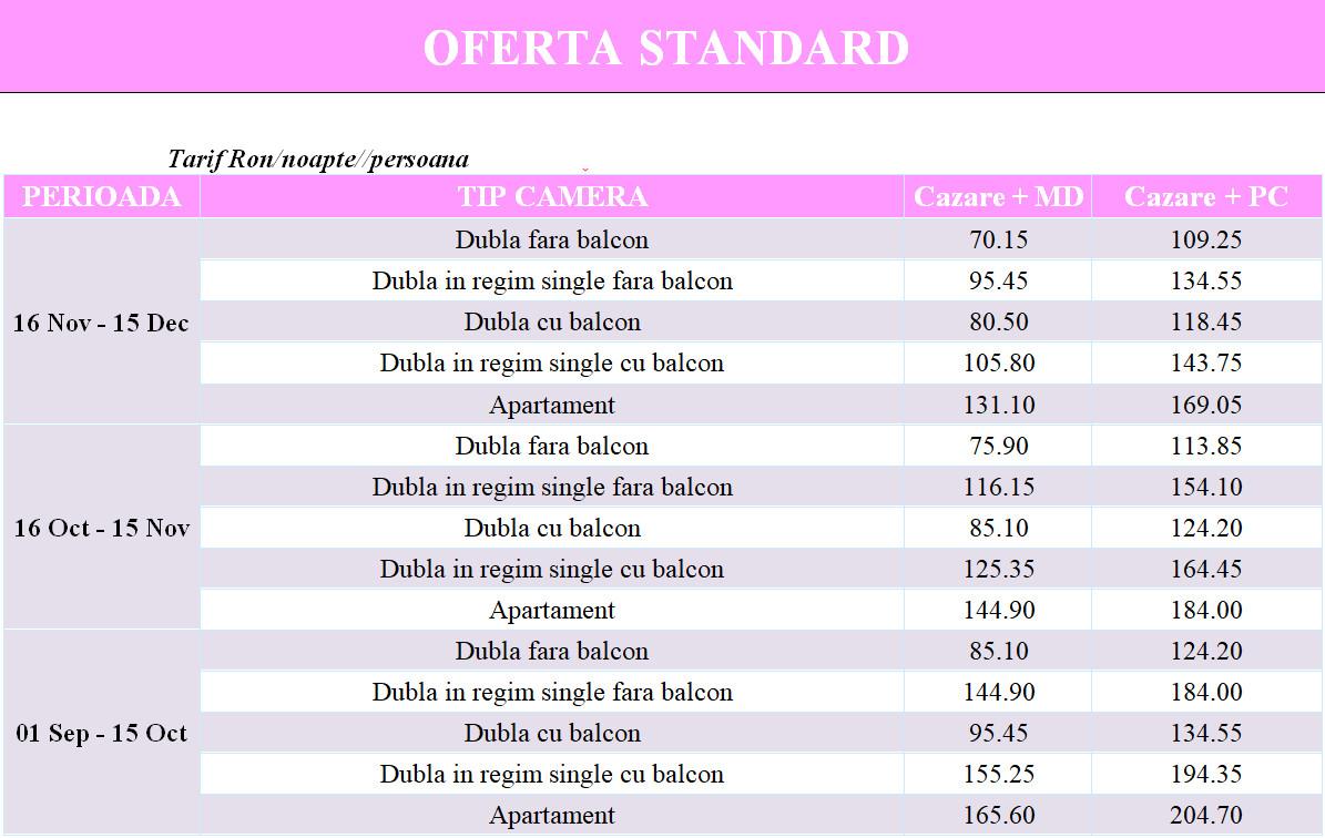 hotel-domogled-baile-herculane-standard